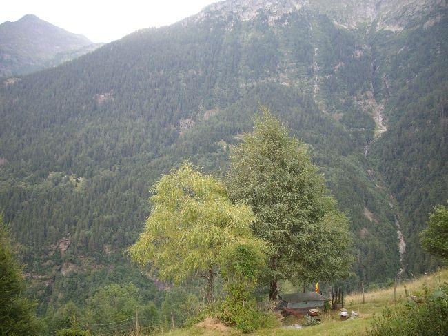2008-08-10-calanca054
